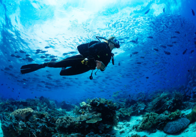Best Places To Scuba Dive