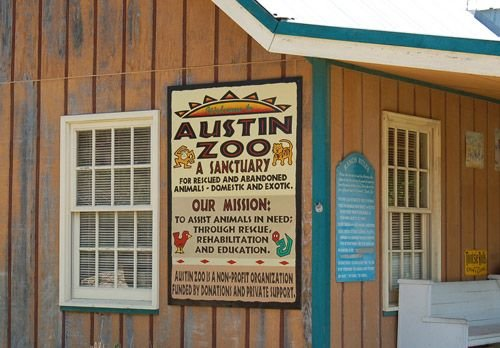 Austin, Texas: Lions, Tigers and Bears, Oh my!