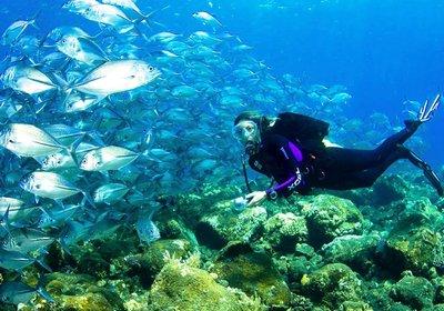 Reef Etiquette