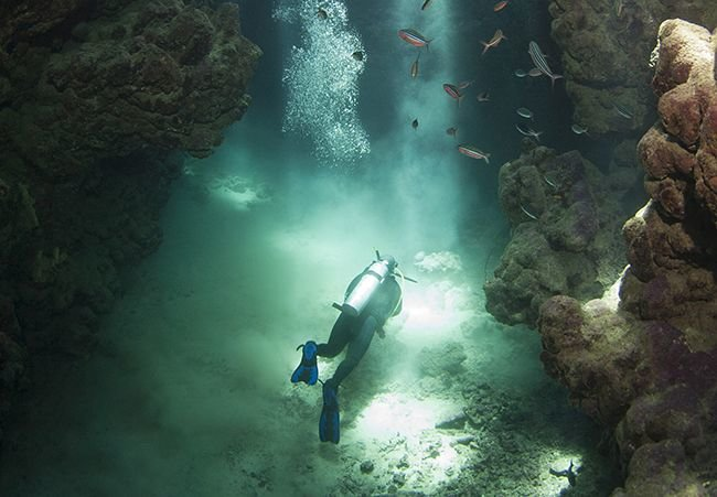 Scuba Diving: How to Get Started