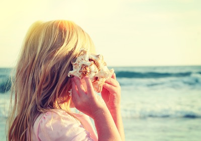 Searching for Seashells: Our Best Tips